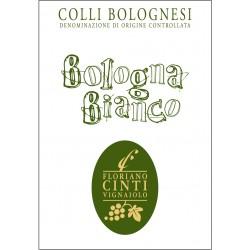 Bologna Bianco Cinti Floriano