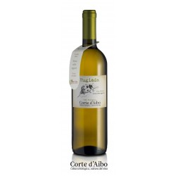 "Bianco ""Rugiada"" Corte d'Aibo 2016"