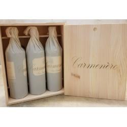 Carmenere Tenuta San Leonardo 2015 (cassa Legno 3 bottiglie)